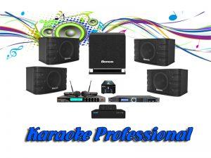 Dàn karaoke kinh doanh chuyên nghiệp BA-01KD