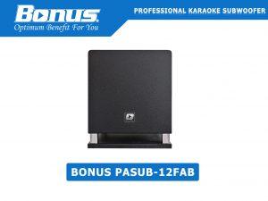 Loa Subwoofer Bonus PASUB-12FAB