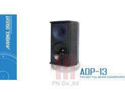 Loa Audience Delight Model: ADP-13